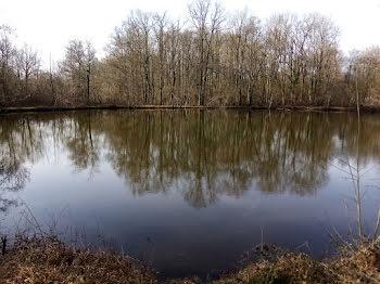 terrain à Fontenay-sur-Loing (45)
