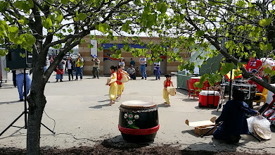 Photo: Chinese drum and lion dance