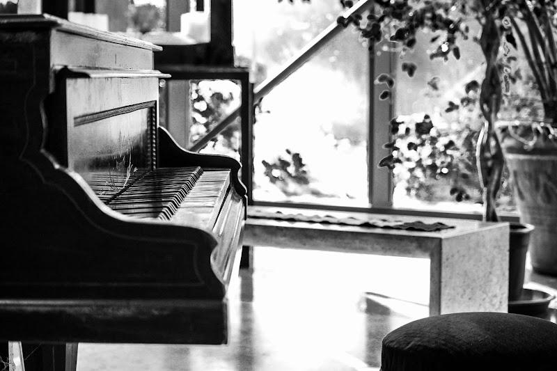 una volta era musica...adesso è silenzio di dario toccafondo