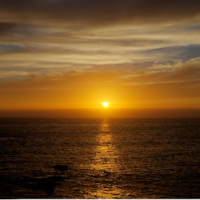 by null - Landscapes Sunsets & Sunrises ( clouds, water, skyline, sky, california, sunset, beach, sunrise )