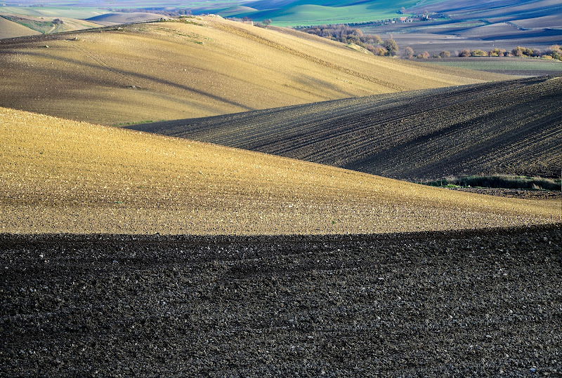 Colori di un paesaggio agricolo di Diana Cimino Cocco