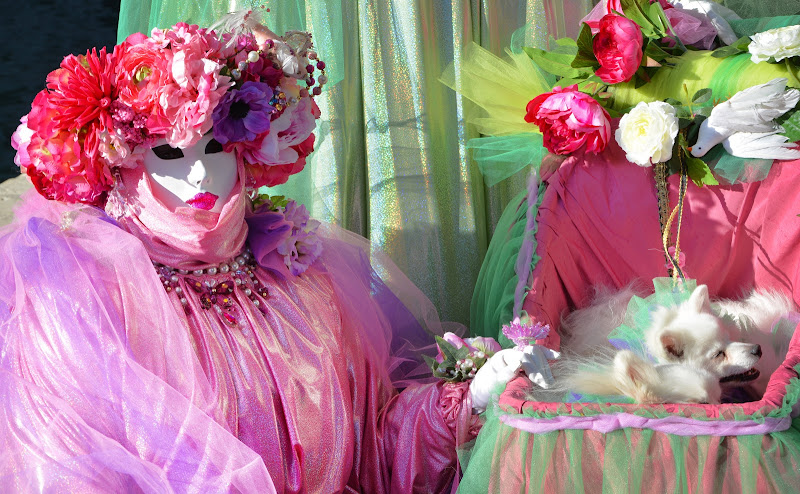 Venezia in rosa di Justinawind