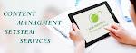 Best CMS Website Company in Delhi MCM Infotech