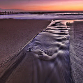 Running back in by Ian Pinn - Landscapes Beaches ( point, dawn, yorkshire, groynes, spurn,  )