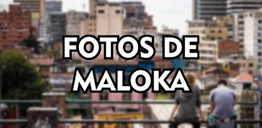Fotos De Maloka Frases De Maloka Para Status 50 Android