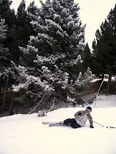Photo: Manu que iba a posar para un foto con el arbolito y de repente se fue al suelo...
