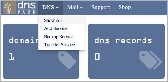 DNS tab > Show All option