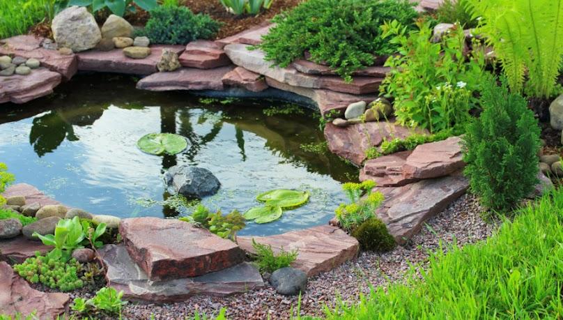 Własny niewielki staw ogrodowy to prawdziwa oaza pośród zieleni.