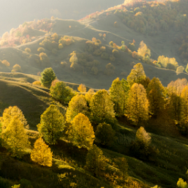 autumn by Sorin Irimia - Landscapes Mountains & Hills (  )