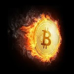 Satoshi Moon - Free Bitcoin Icon