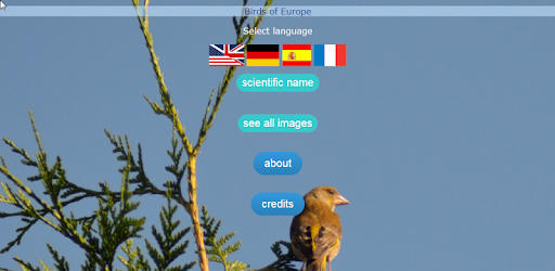 Birds of Europe (DE EN ES FR) - Apps on Google Play