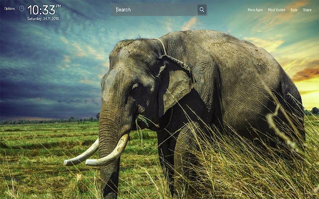 Elephant Wallpapers Newtab Theme