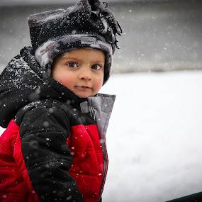 Let it Snow by Dallas Golden - Babies & Children Children Candids ( child, winter, snow )
