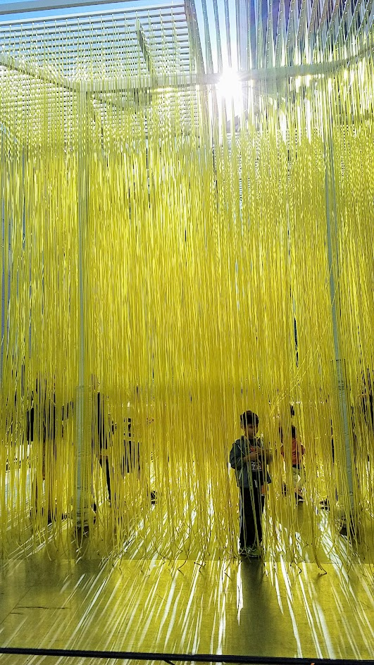 Jesús Rafael Soto's Penetrable, also known as Yellow Noodles or Spaghetti sometimes. It's a grid simply with yellow plastic hoses that viewers can interact with for free, on loan until Feb 2017 at LACMA in the main plaza