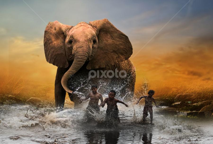 by Totok Anwarsito - Digital Art Things