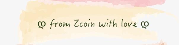 Zcoin 法國特派員封面主圖