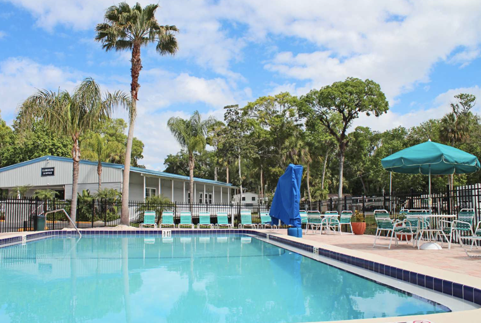 Pool area with blue chairs and palm trees in the background