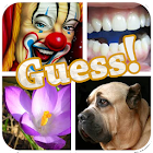 PICS QUIZ - Guess The Word icon
