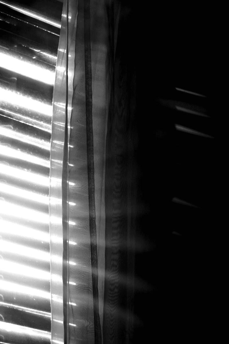 Prime luci del mattino di Laura Molinaro