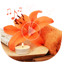 Relaxing Spa Music - Traditional icon