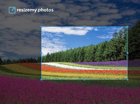 resizemy.photos