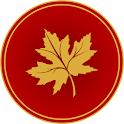 DANISH  SHAKEEL - Logo