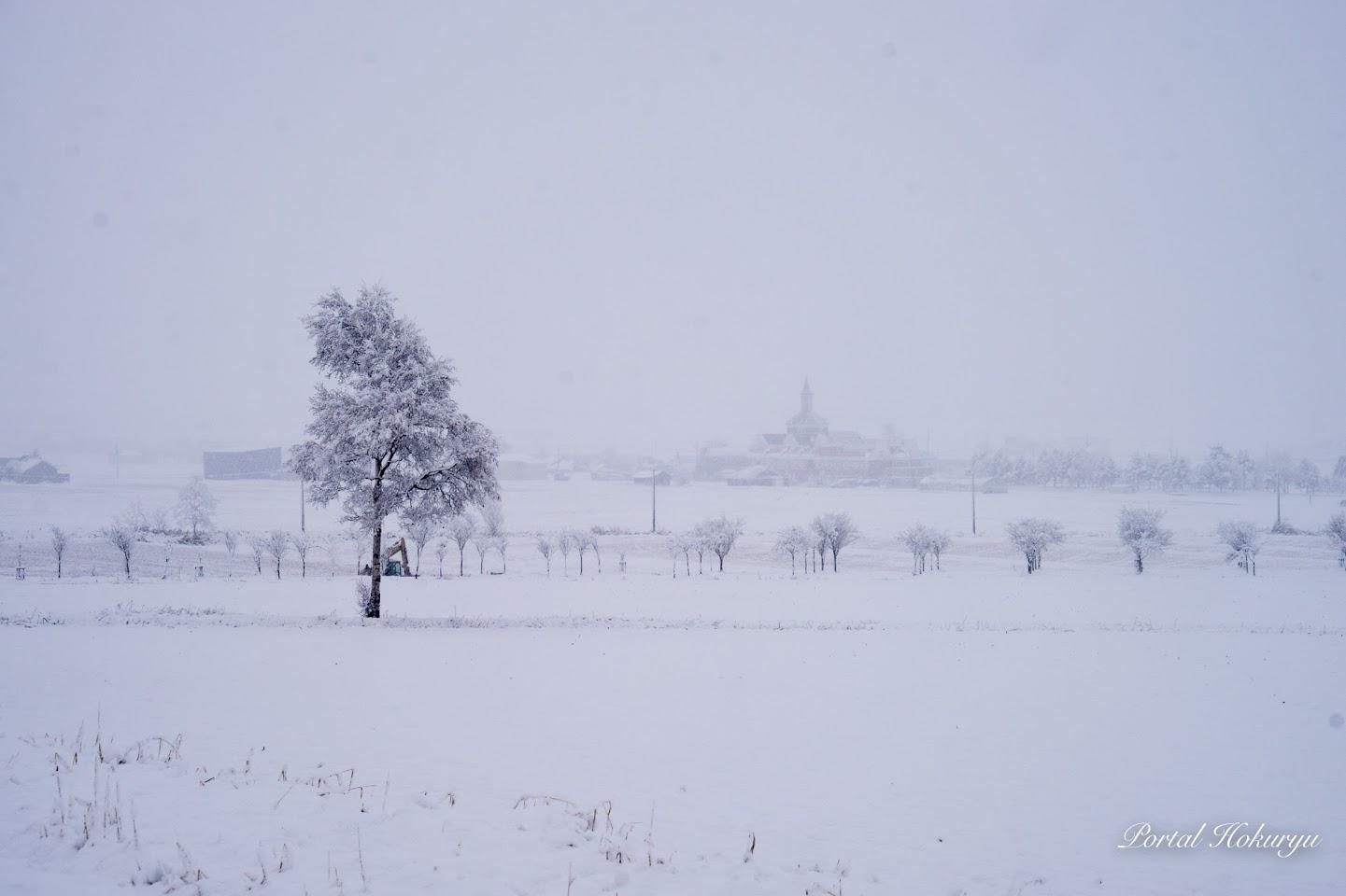 雪に包まれたひまわりの里