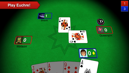 Euchre 3D 5.3 screenshots 1