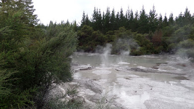 Photo: After leaving the Waimangu Volcanic Valley, we stopped at the Waiotapu Geothermal Mud Pools.