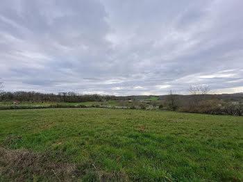 terrain à Sainte-Orse (24)