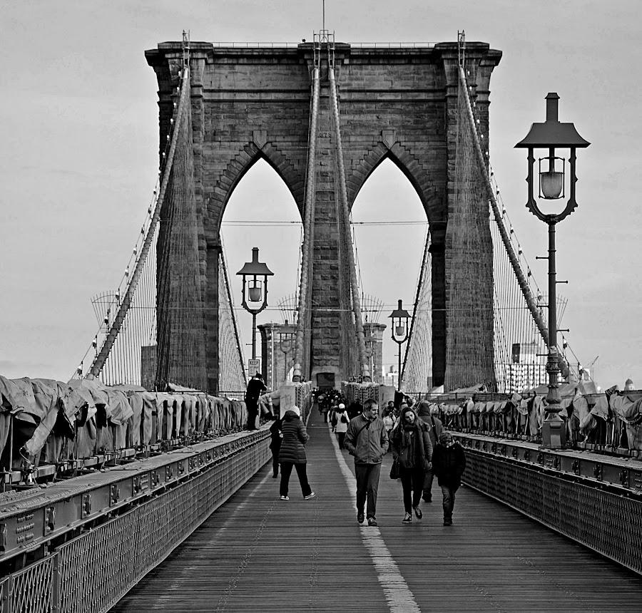 by Jose De La Cruz - Buildings & Architecture Bridges & Suspended Structures (  )