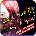 Draw Love Poetry on Photos icon