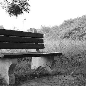 by Sudipta Ghosh - City,  Street & Park  Amusement Parks