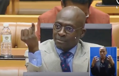 Malusi Gigaba raises his pinky in response to Mbuyiseni Ndlozi during the Ramaphosa Q&A