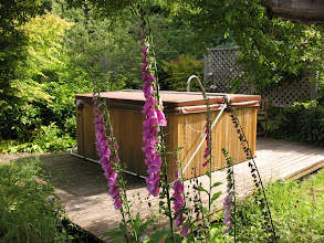 Photo: Day 6: Picture of the secluded hot tub at the Kangaroo House B&B.