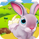 BUNNY RUN SURVIVAL APK