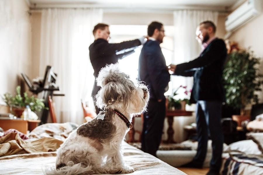 Hochzeitsfotograf Sergey Rzhevskiy (Photorobot). Foto vom 12.07.2018