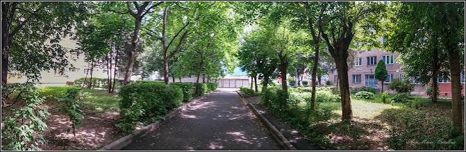 Photo: Calea Victoriei,  Nr: 15, 17  - 2017.06.07