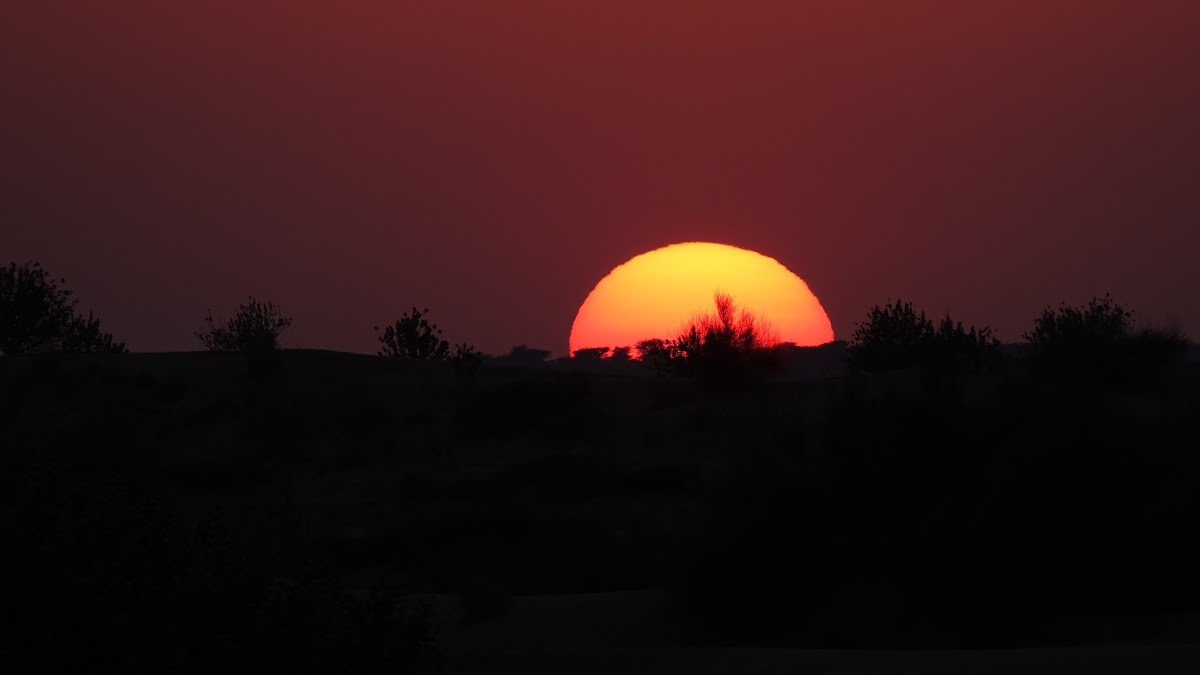 India. Rajasthan Thar Desert Camel Trek. Sunset over the Kadar dunes