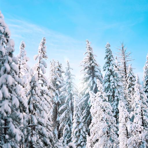 pressing-baleo-pack-hiver