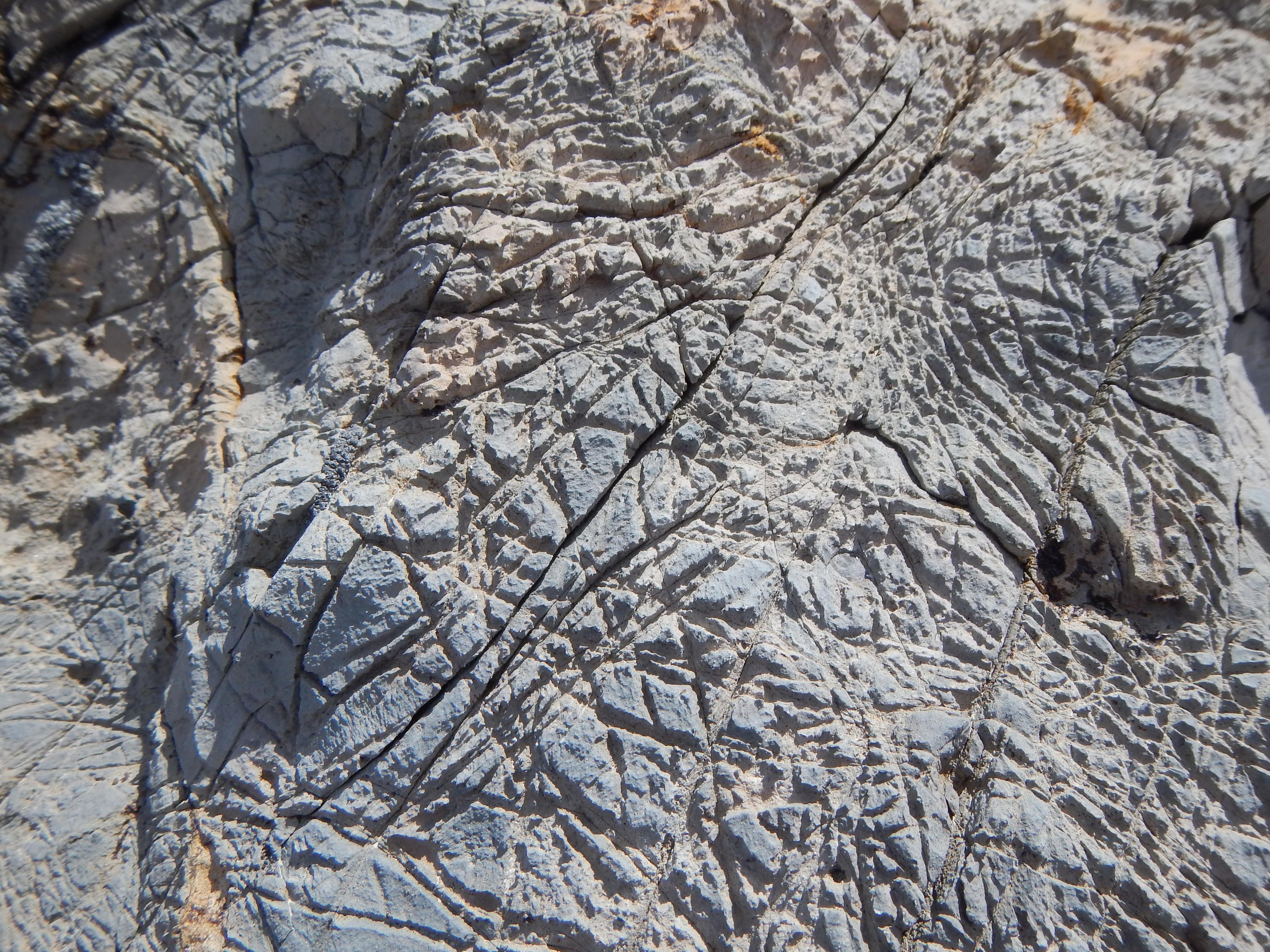 Photo: Rock cracks