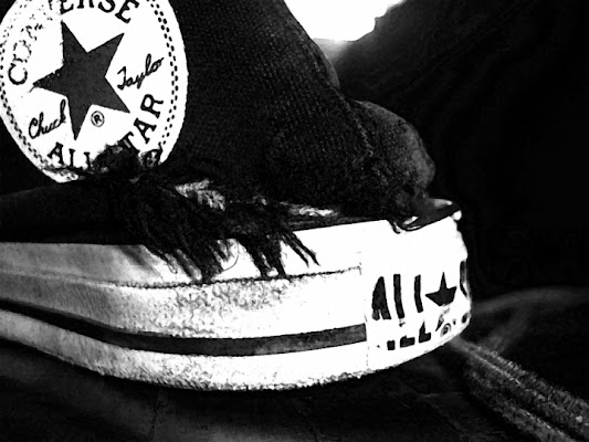 Stiamo con i piedi a terra... di Serenella