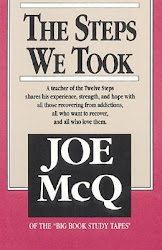 The Steps We Took - Joe McQ