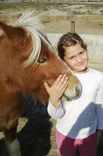 Cours de cheval pour petit Gers