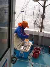 Photo: 「魚がくわんから、メシでも喰おうーっと!」