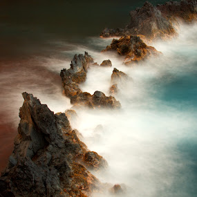 by Dipankar Bose - Nature Up Close Rock & Stone ( maui, wave, beach, rocks, hawaii )