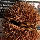 American chestnut.