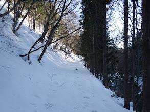 川沿いに林道を進む