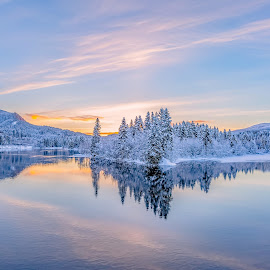 The cold silence by Grete Øiamo - Landscapes Sunsets & Sunrises ( snow, sunset, cold, water, three )