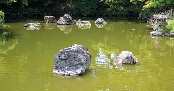 55. Maruyama Park (100 Japanese Garden in Kyoto I recommend)